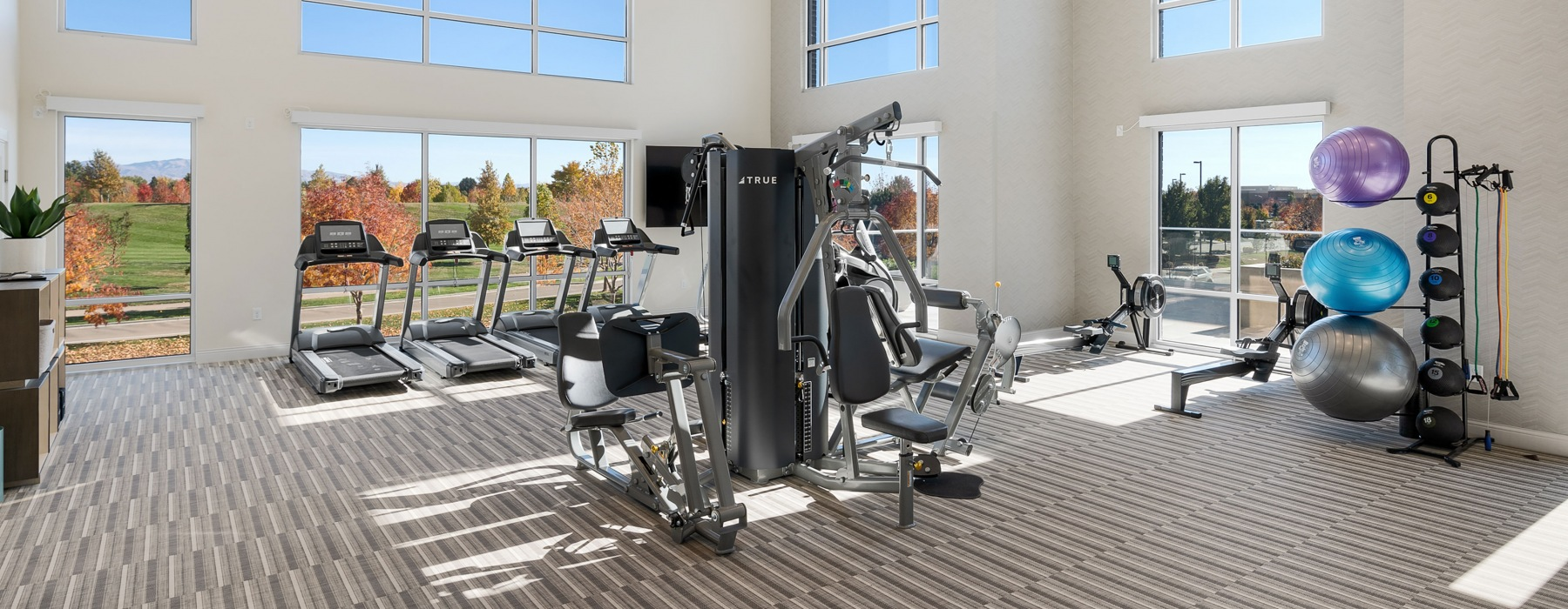 Bri at the Village Fitness Center for Active Adult Healthy Living